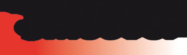 MecVel_logo